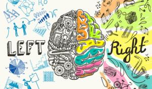 brain-gym